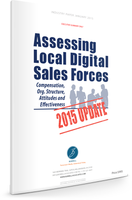 Assessing Local Digital Sales Forces: 2015 Update